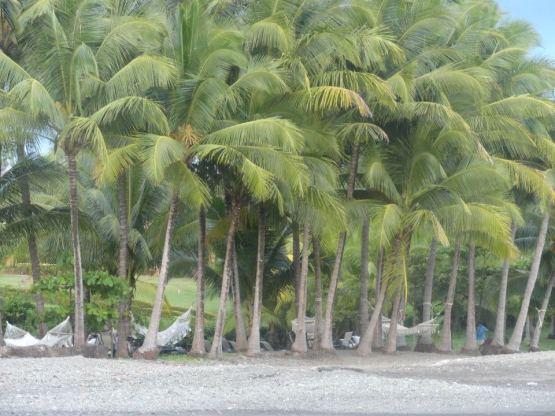 costarica11