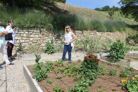 Ilaria, the estate manager at Fattoria di Montemaggio